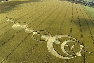 Pictogram crop circle