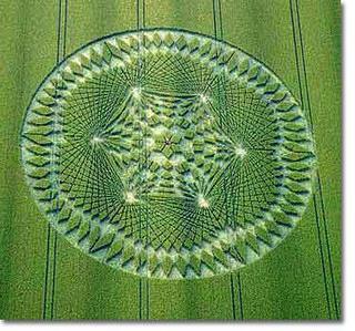 Crop Circle 22
