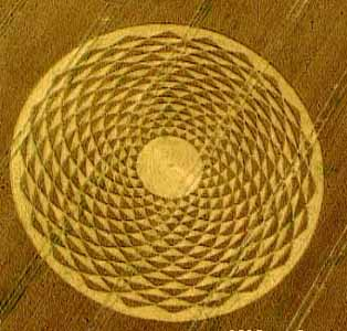 Intrcate designs appear in crop circles