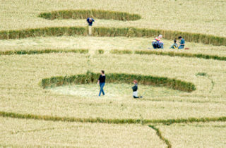people inside a crop circle